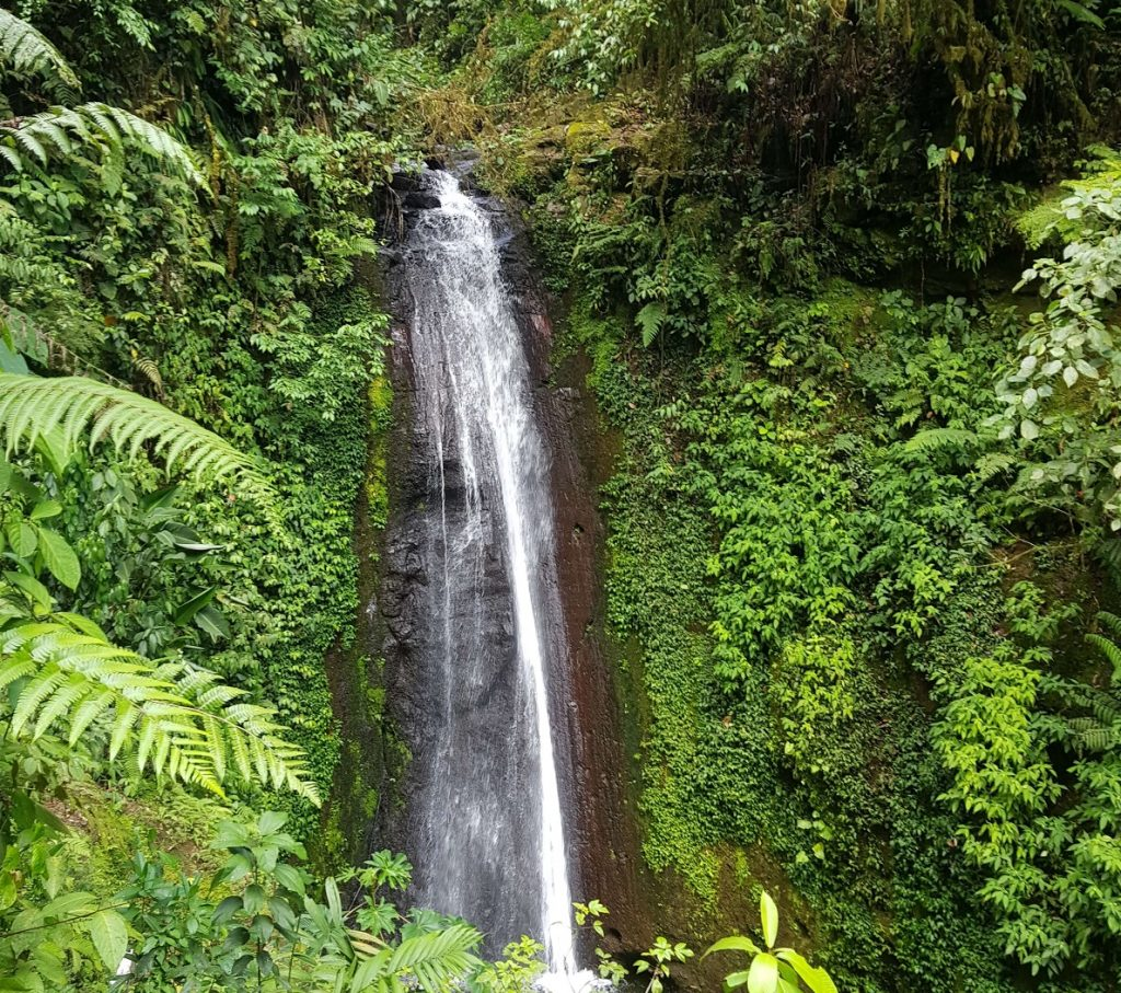 waterfall in the mountains of costa rica