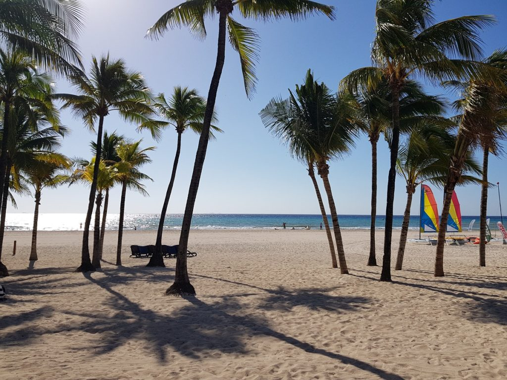 expanse of the beach at sandos playacar
