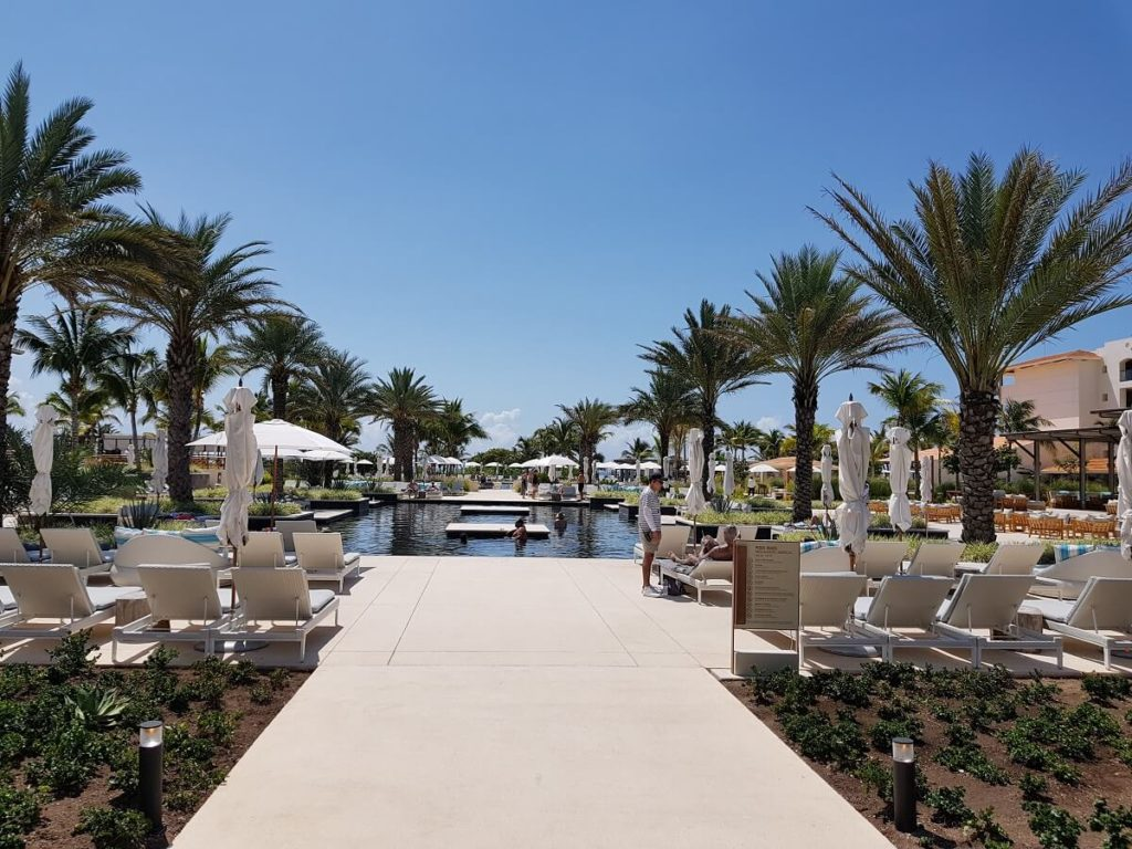 unico main pool area with loungers and palm trees
