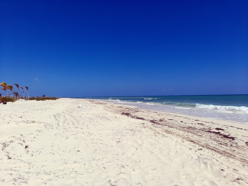 stretch of white sandy beach with blue cloudless sky